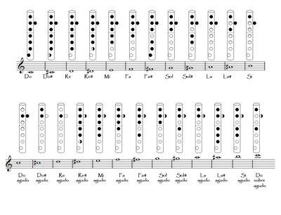 Práctica Instrumental
